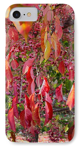 Red Leaves And Berries IPhone Case