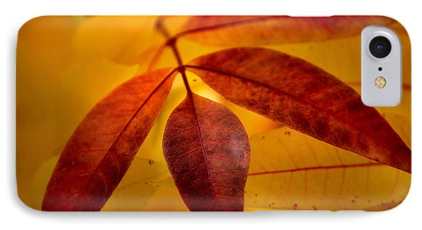 Red Leaves At Dawn Phone Case by Deb Halloran