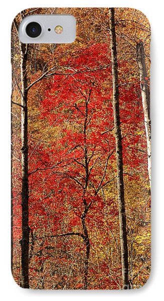 Red Leaves IPhone Case by Patrick Shupert