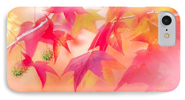 Red Leaves With Backlit, Autumn IPhone Case by Panoramic Images
