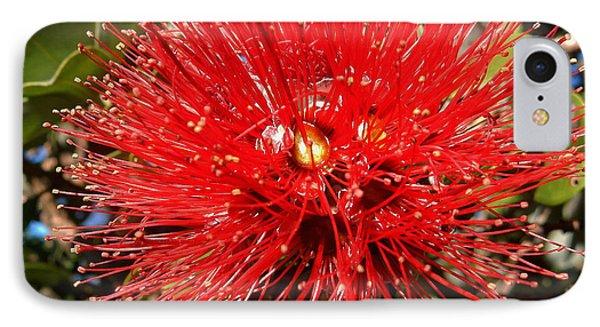 Red Lehua IPhone Case by Pamela Walton