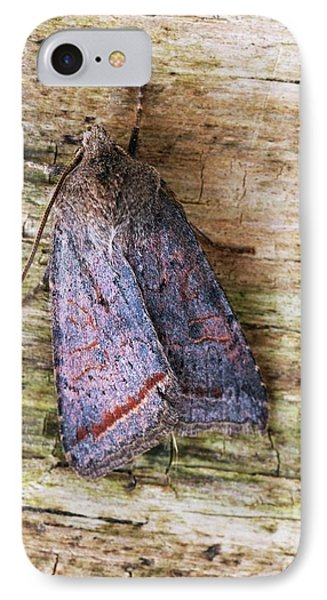 Red Line Quaker Moth IPhone Case by David Aubrey