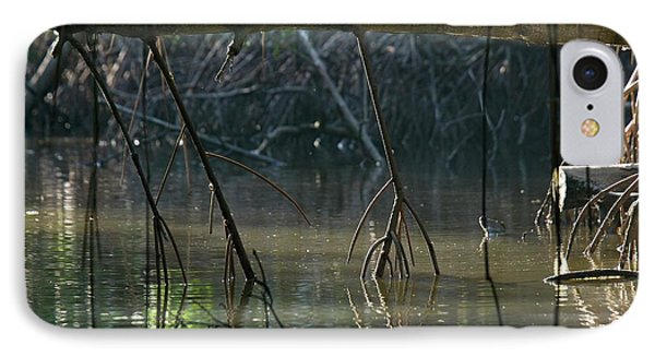 Red Mangrove (rhizophora Mangle) Roots IPhone Case