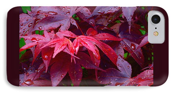 Red Maple After Rain IPhone Case by Ann Horn
