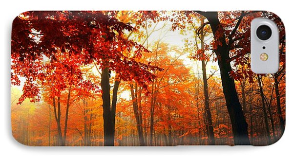 Red Maple Forest IPhone Case by Terri Gostola