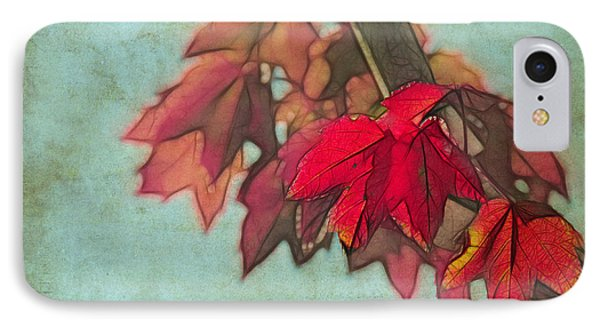 Red Maple IPhone Case by Judi Bagwell