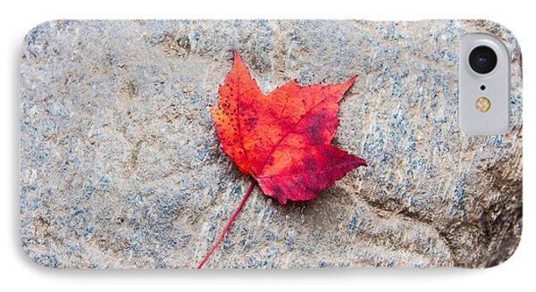 Red Maple Leaf On Granite Stone In Horizontal Format IPhone Case by Karen Stephenson