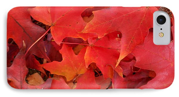 Red Maple Leaves Carpeting The Ground IPhone Case by Patricia E Sundik