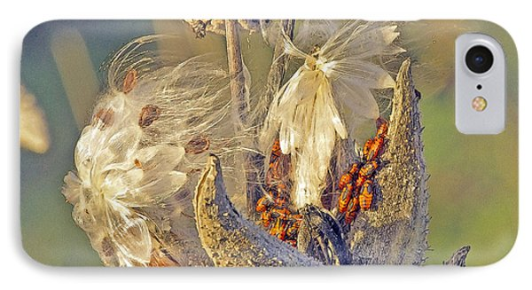 Red Milkweed Beetles Phone Case by Constantine Gregory