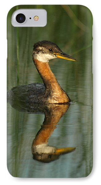 IPhone Case featuring the photograph Red-necked Grebe by James Peterson