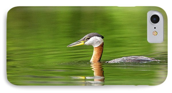 Red Necked Grebe Near Whitefish IPhone Case