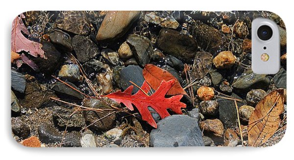 Red Oak Leaf IPhone Case by Michael Saunders