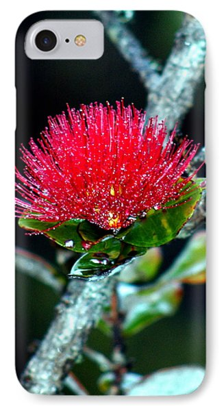 IPhone Case featuring the photograph Red Ohia Lehua In Hawaii Volcano Mist by Lehua Pekelo-Stearns