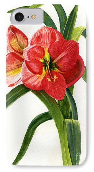 Red-orange Amaryllis Phone Case by Sharon Freeman