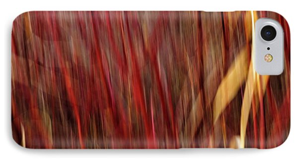 Red Osier Dogwood Phone Case by Theresa Tahara