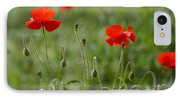 Red Poppies 2 Phone Case by Carol Lynch