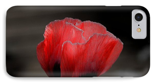 Red Poppy Flower IPhone Case by Nicola Fiscarelli