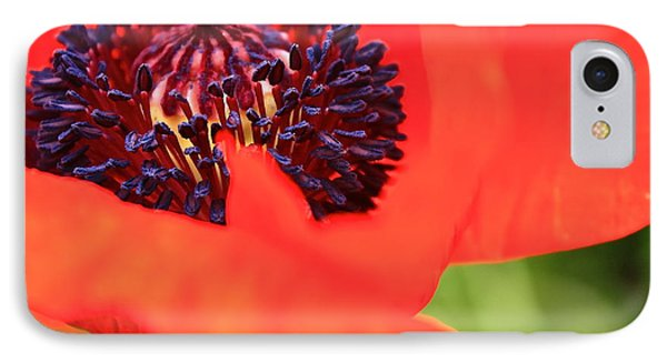 Red Poppy IPhone Case by Linda Bianic