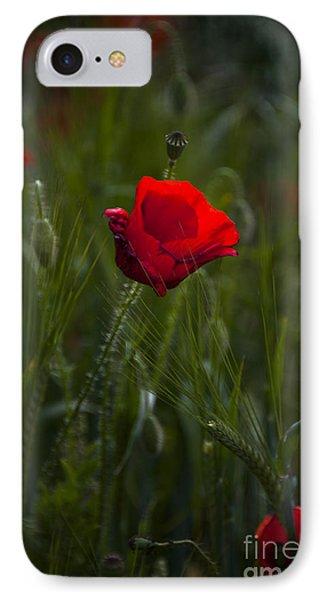 Red Poppy Phone Case by Svetlana Sewell