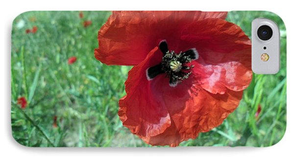 IPhone Case featuring the photograph Red Poppy by Vesna Martinjak