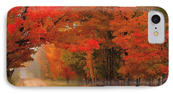 Red Red Autumn IPhone Case by Terri Gostola