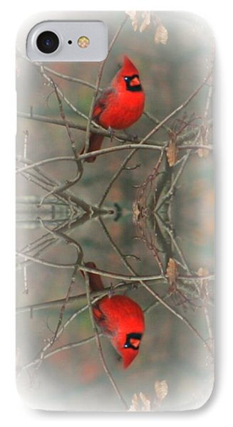 Red Reflection IPhone Case by Barbara S Nickerson