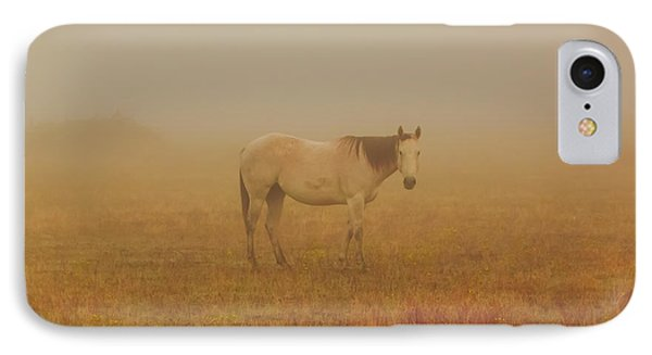 Red Roan In Mist IPhone Case by Robert Frederick