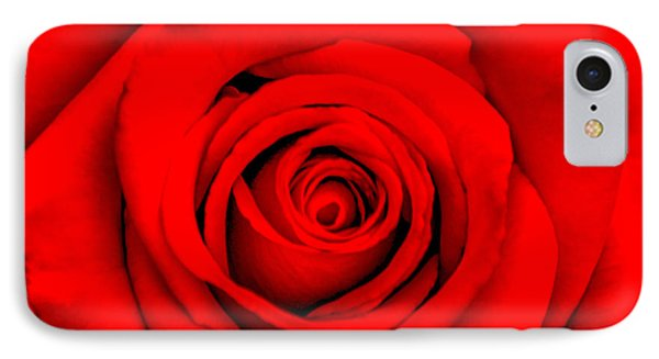 Red Rose 1 IPhone Case