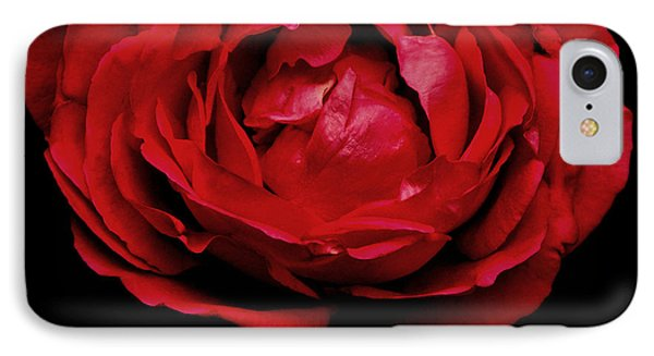 IPhone Case featuring the photograph Red Rose by Charlotte Schafer