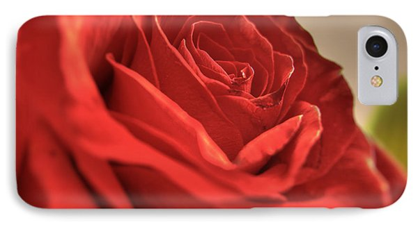 Red Rose Closeup IPhone Case