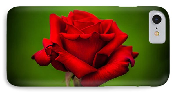 Red Rose Green Background IPhone Case by Az Jackson