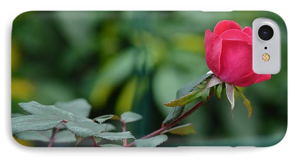 IPhone Case featuring the photograph Red Rose I by Lisa Phillips