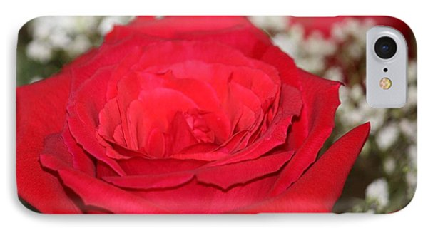 Red Rose IPhone Case