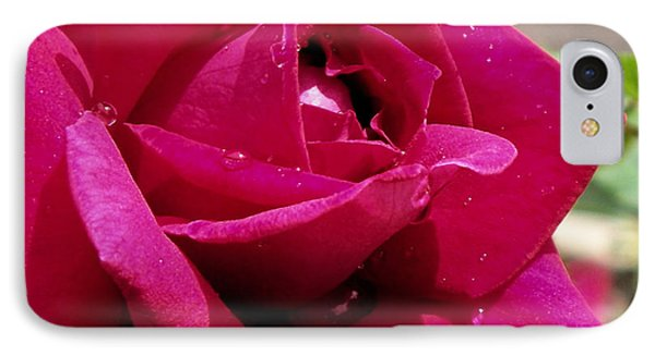 Red Rose Up Close Phone Case by Thomas Woolworth