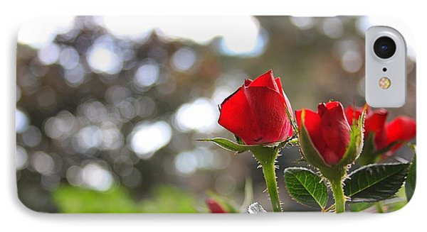 Red Roses IPhone Case by Daniel Precht