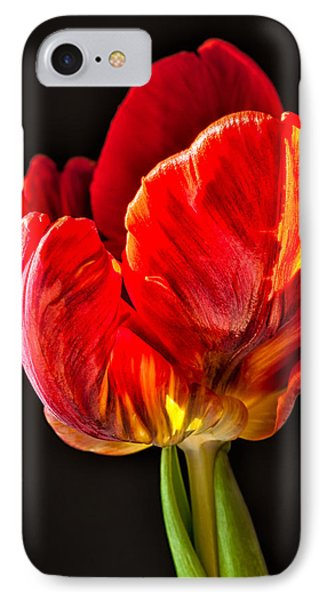 Red Ruffles IPhone Case by Joan Herwig
