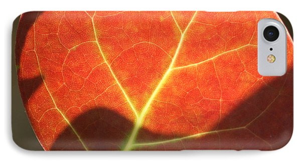 IPhone Case featuring the photograph Red Sea Grape Leaf by Peg Toliver