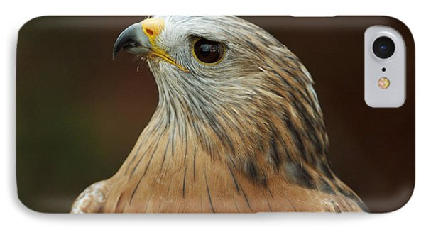 IPhone Case featuring the photograph Red-shouldered Hawk by Doug Herr
