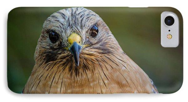 Red Shouldered Hawk IPhone Case by Linda Villers