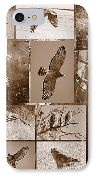 Red-shouldered Hawk Poster - Sepia Phone Case by Carol Groenen