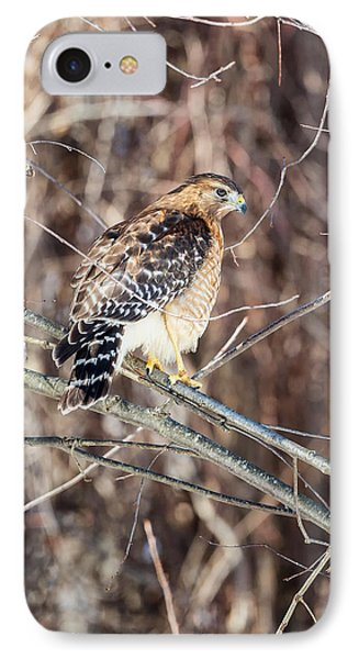 Red Shouldered Hawk Rear View IPhone Case
