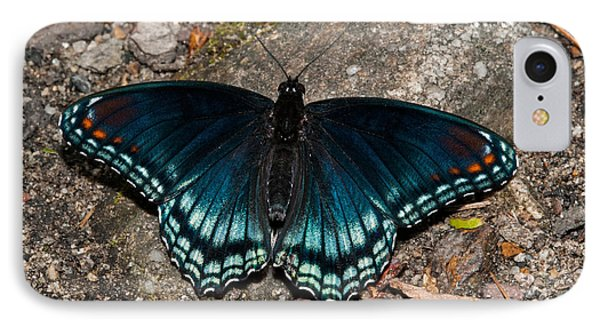 Red Spotted Purple Butterfly Phone Case by Lara Ellis