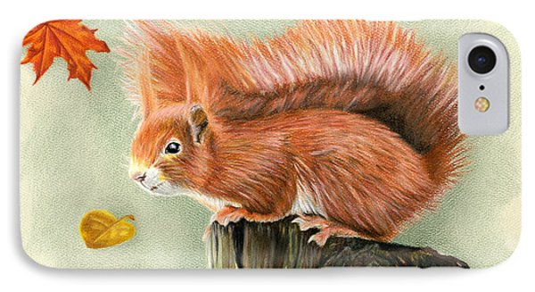 Red Squirrel In Autumn IPhone Case by Sarah Batalka