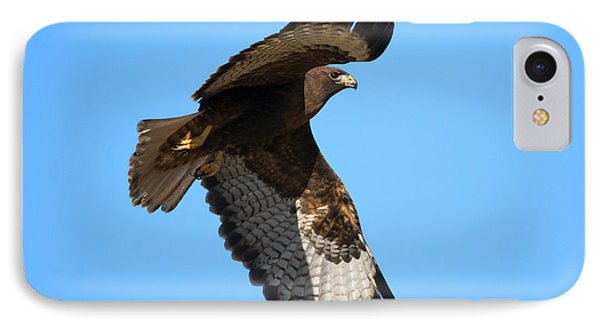 Red-tail Flight IPhone Case by Mike Dawson