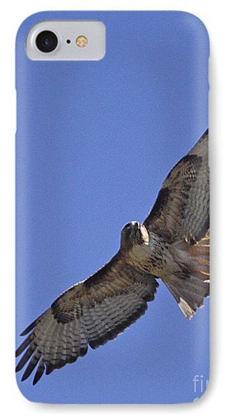 Red-tail Hawk  #1853 Phone Case by J L Woody Wooden