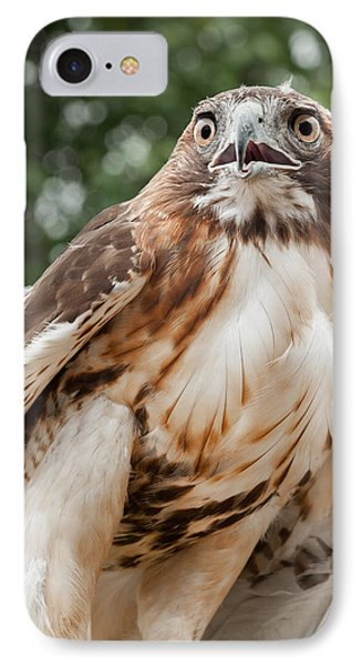 Red Tail Hawk Phone Case by Bill Wakeley