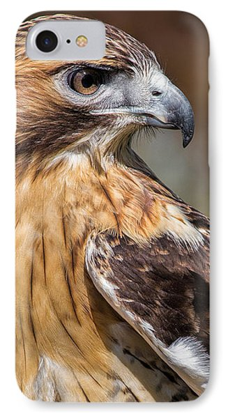 Red Tail Hawk IPhone Case by Dale Kincaid