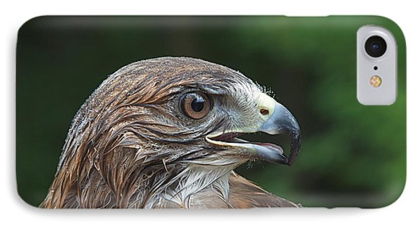 Red Tail Hawk Rain Phone Case by Peter Gray