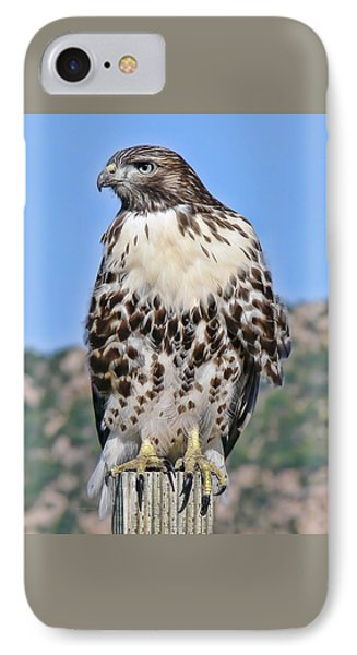 Red Tail Hawk Youth Phone Case by Jennie Marie Schell