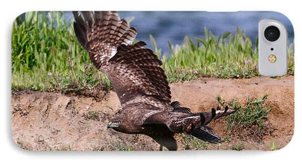 Red Tail On The Hunt Phone Case by Paul Marto
